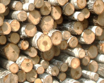 Wood imports to Finlanddropped 8% year on year